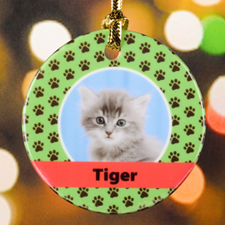 Cat Pet Personalized Photo Porcelain Ornament, Green
