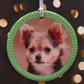 Polka Dot Green Personalized Photo Porcelain Ornament