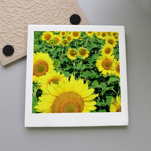 Personalized Photography Tile Coaster