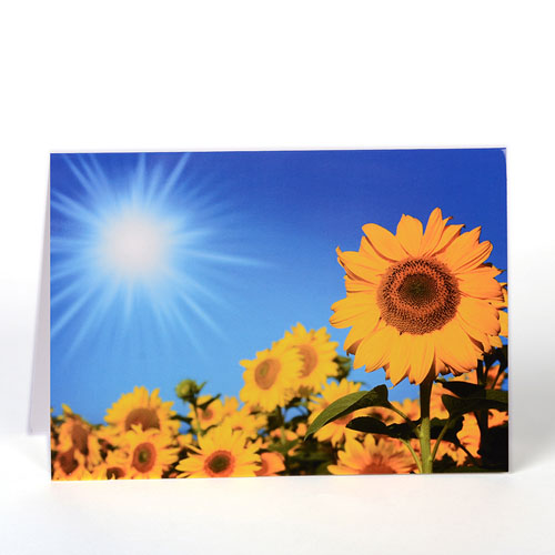 Personalized Photography Greeting Cards