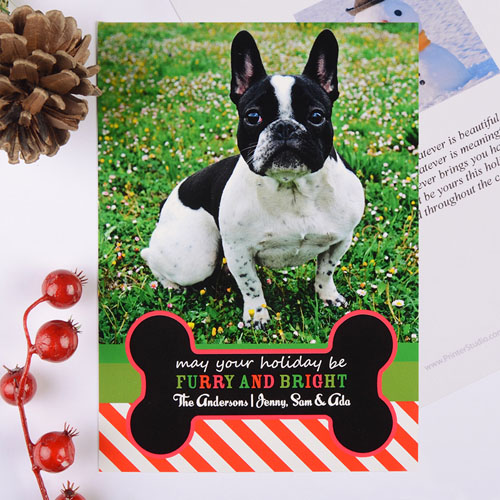 Furry & Bright Personalized Photo Christmas Card