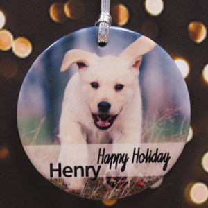 Hanging With Family Personalized Photo Porcelain Ornament