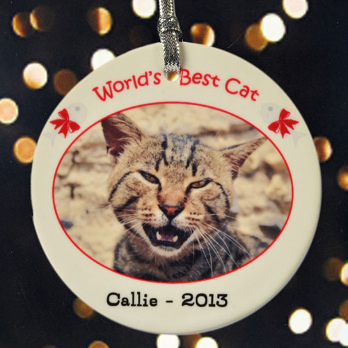 World's Best Cat Personalized Photo Porcelain Ornament