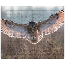 Tray Puzzles