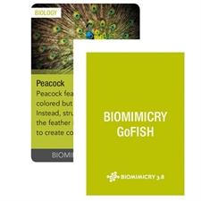 Biomimicry GoFISH cards
