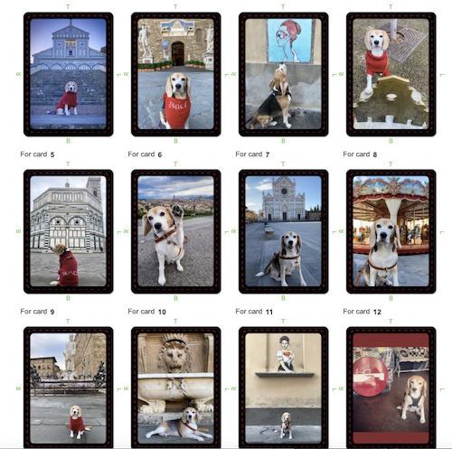 Baci da Firenze Trivia Cards